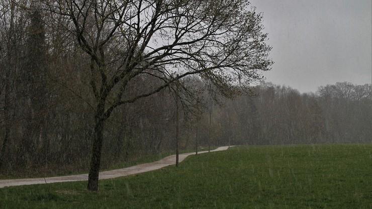 Zimno i z opadami. Prognoza pogody na weekend, 21-22 listopada
