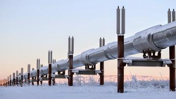 """Niemcy """"sąsiadują"""" z Rosją? Głosy na forum energetycznym obu krajów"""