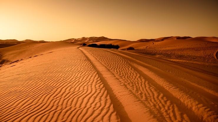 Sudan. Polacy odkryli najstarsze ślady człowieka we Wschodniej Saharze