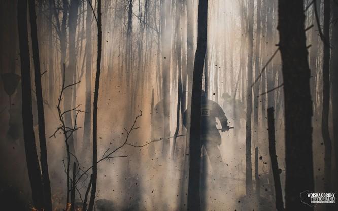 Strażacy walczyli z pożarem przez 5 dni. Teraz kontrolują teren
