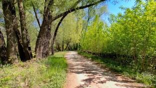 03-03-2021 05:58 Nie możesz się już doczekać wiosny? Zobacz i przypomnij sobie, jak piękne będą wtedy krajobrazy