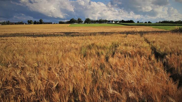 Polska podpisała z EBI umowę o wartości 700 mln euro na wsparcie obszarów wiejskich