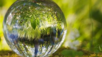 Świat staje, środowisko łapie oddech. Ekologiczne aspekty koronawirusa