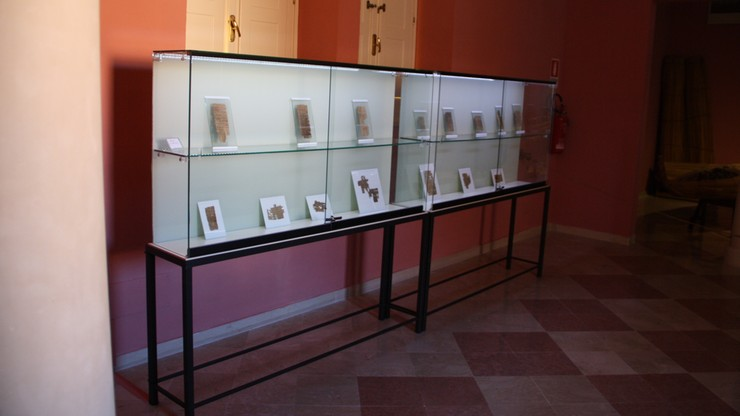 Muzeum papirusów na Sycylii walczy o przeżycie. Sprzedaje część zbiorów, by się utrzymać