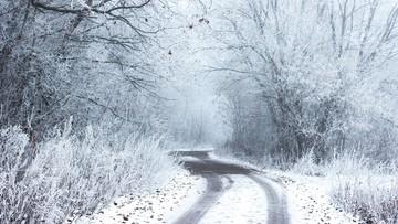 Czeka nas załamanie pogody. Miną ujemne temperatury, ale nadejdą zawieje śnieżne. Będzie ślisko