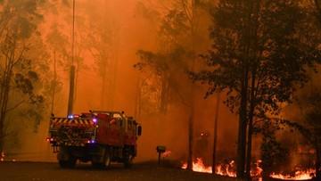 """Pożar w pobliżu Sydney """"zbyt duży, aby go ugasić"""""""