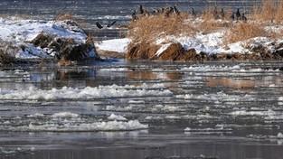Zjawiska lodowe na Wiśle (4K)