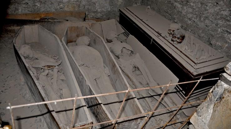 Odcięli głowę 800-letniego krzyżowca i zabrali ją ze sobą