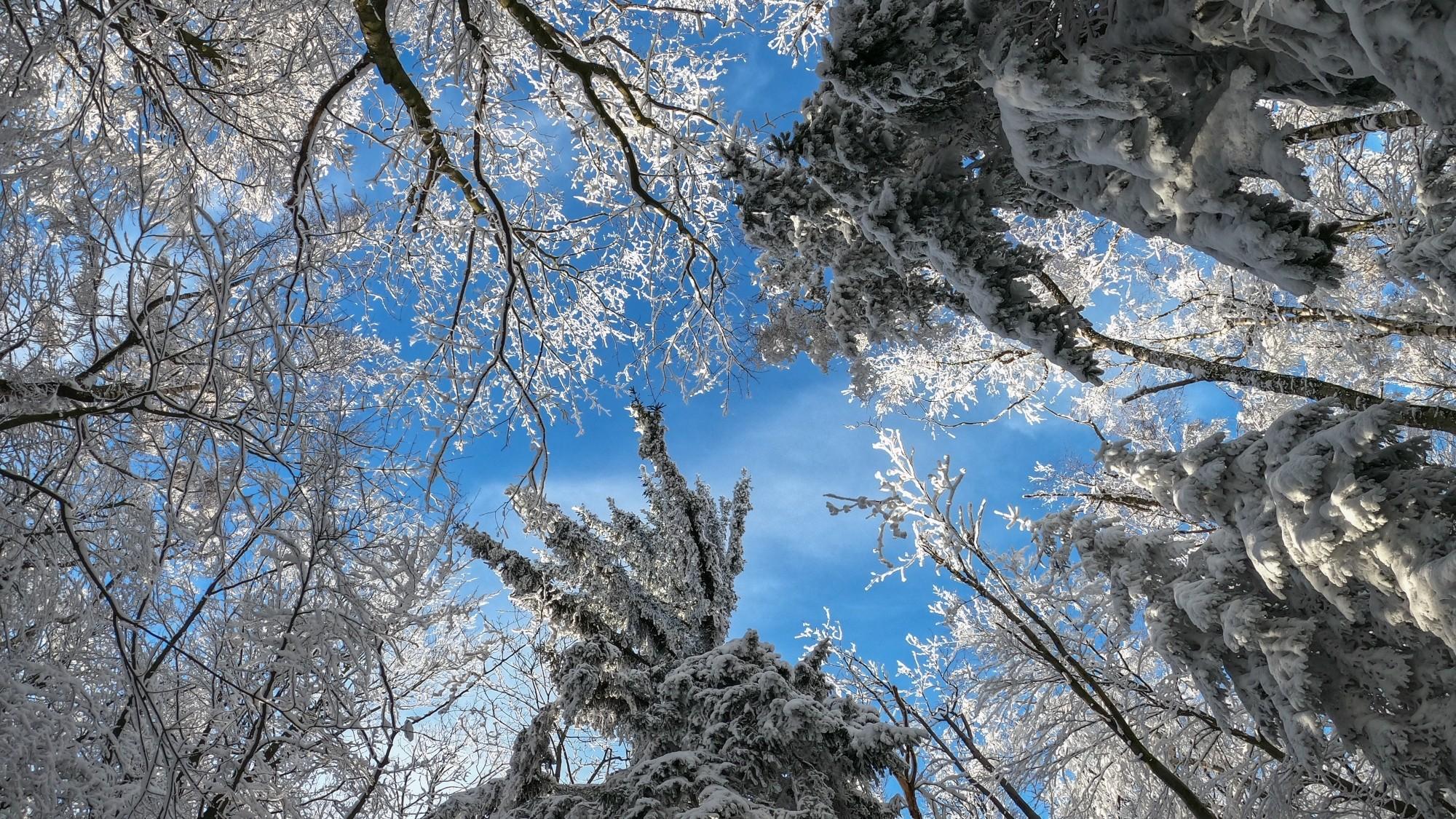 Kraina Narnii - zdjęcie 2