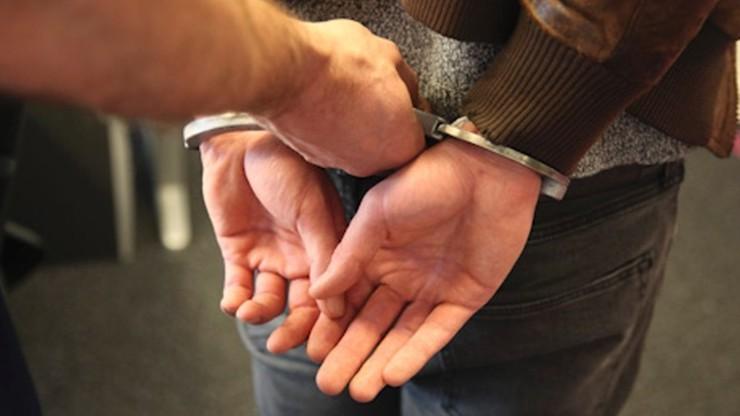 Wpadł po obrabowaniu niepełnosprawnego. Więzienie dla Polaka po serii przestępstw w Holandii