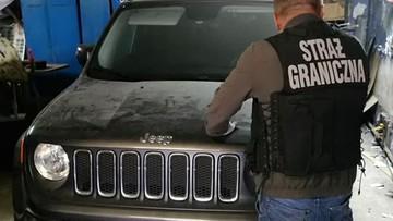"""Gigantyczne """"dziuple"""". Kradzione części samochodowe wywieziono z nich ośmioma ciężarówkami"""