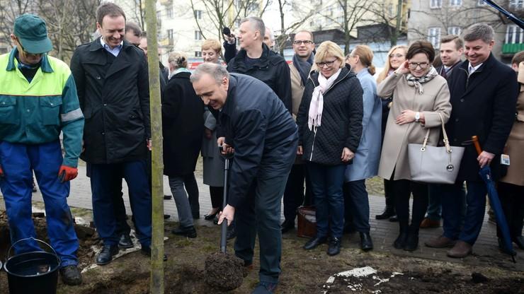 """Platforma sadzi drzewa. """"Hałas pił mechanicznych jest symbolem ostatnich tygodni"""""""