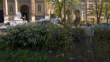 """""""Drzewo Łez"""" na terenie dawnego, warszawskiego getta. Ma upamiętnić matki ratujące dzieci"""