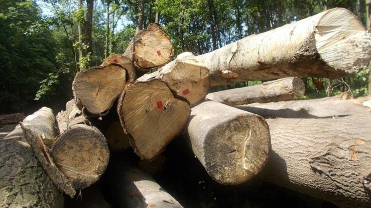 Odwołano 32 z 39 członków Państwowej Rady Ochrony Środowiska
