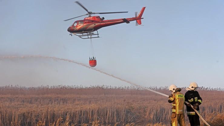 Pożar w Biebrzańskim Parku Narodowym. Pomóc chcą Szwedzi