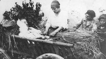 Nieskończenie niepodległa: wiktoria, 15 sierpnia 1920 roku