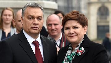Po rozmowach Szydło-Orban. Umocniona współpraca Grupy Wyszehradzkiej
