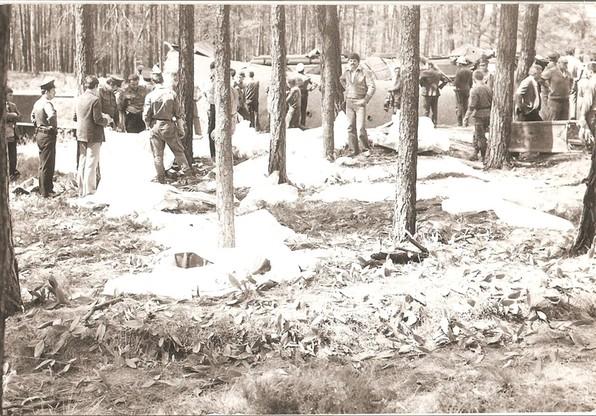 Worki z ciałami ofiar w lesie tuż przy miejscu wypadku