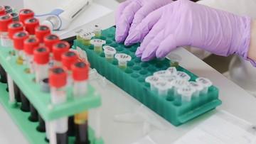Gdańscy naukowcy pracują nad testem na koronawirusa. Może być tańszy od obecnie wykonywanego