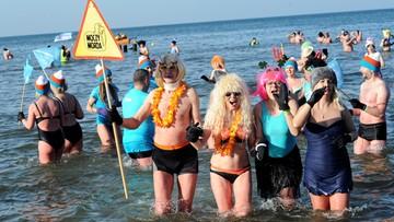 Tysiące morsów weszły do Bałtyku w Mielnie [ZDJECIA]