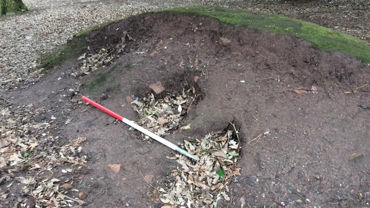 Szukał skarbów wykrywaczem metalu. Zniszczył grobowiec sprzed 5 tys. lat