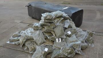 42 kg marihuany ukryte w samochodzie ciężarowym