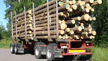 Transporty drewna niszczą drogi. NIK: konieczna jest zmiana przepisów