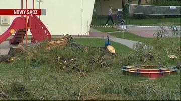Drzewo runęło na plac zabaw w Nowym Sączu. Ucierpiała 5-latka