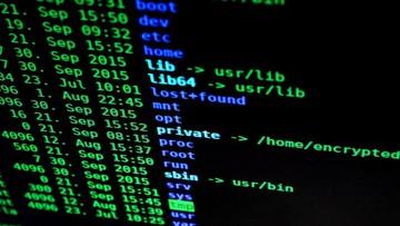 """Google ostrzega przed rosnącą falą ataków hakerskich. """"Są bardzo, bardzo opłacalne"""""""
