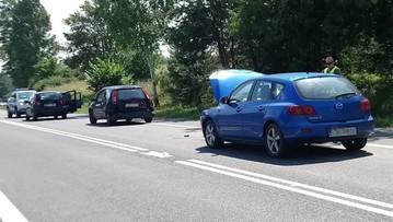 Bocian spacerował po asfalcie. Skutek: zderzenie czterech samochodów