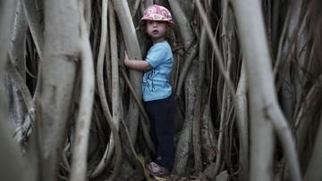 Pozwólcie chodzić dzieciom po drzewach. Apel naukowców