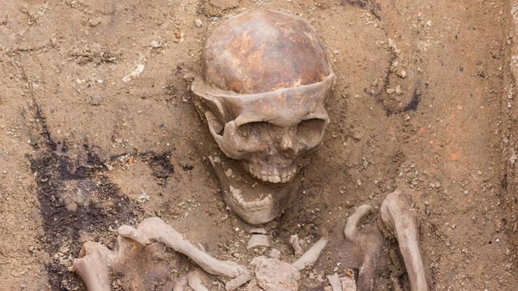 W Poznaniu znaleziono szkielet z XVII w. ze śladami trepanacji czaszki