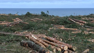 Ekolodzy o przekopie Mierzei: koszt to 2-3 mld zł, zwrot z inwestycji będzie trwał nawet 1500 lat