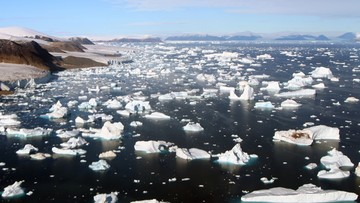 """""""Gwałtowna przemiana"""". Arktyka przestawia się na zupełnie nowy klimat"""