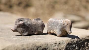 Znalezisko sprzed 3,5 tys. lat - to figurki świń