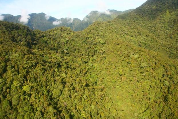 Góry Bosavi w Nowej Gwinei porośnięte są tropikalną dżunglą