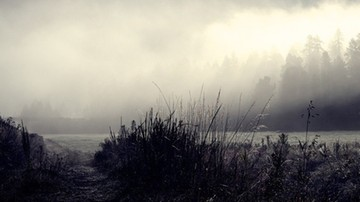 Niedziela mglista i pochmurna. Temperatury na plusie