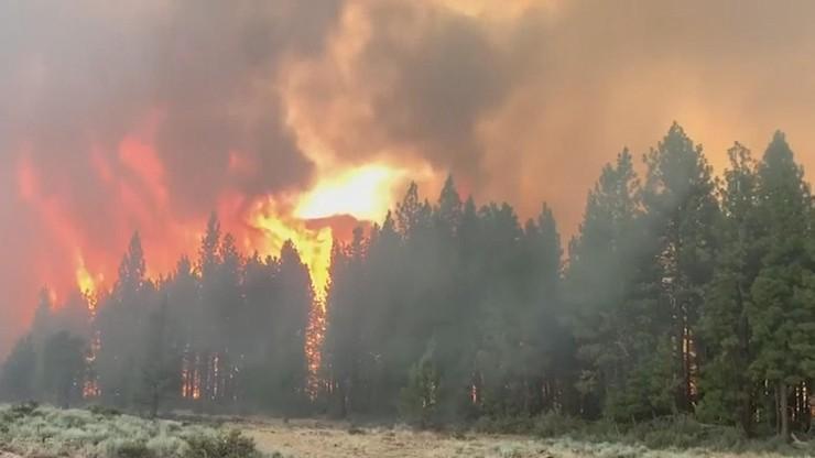 USA. Pożary niszczą Oregon. Tysiące osób musiało uciekać z domów