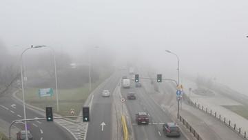 Rzecznik Praw Dziecka pyta premiera o działania rządu dot. zwalczania smogu