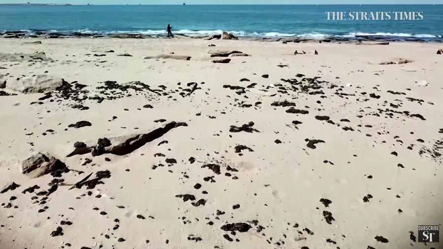 Skażone ropą plaże w Izraelu. Fot. YouTube / The Straits Times.