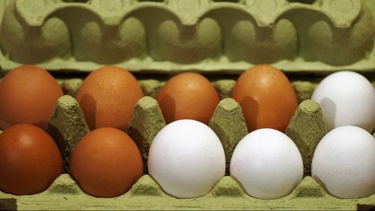 Salmonella na skorupkach jajek. Ostrzeżenie Sanepidu