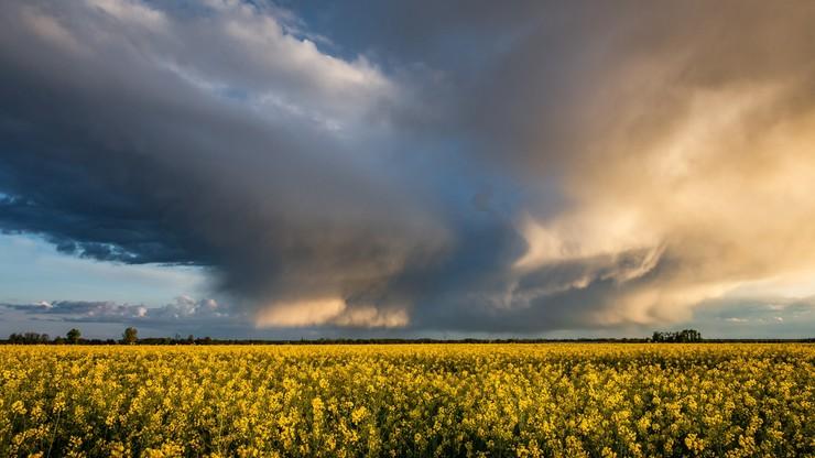 Silny wiatr i burze. Prognoza pogody na wtorek, 3 sierpnia