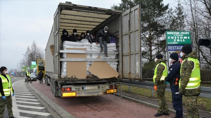 Nielegalni imigranci w ciężarówce. Udawali słonecznik