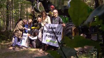 Firma wzywa ekologów do zapłaty za blokady wycinki w Puszczy Białowieskiej. Ich dane dała policja