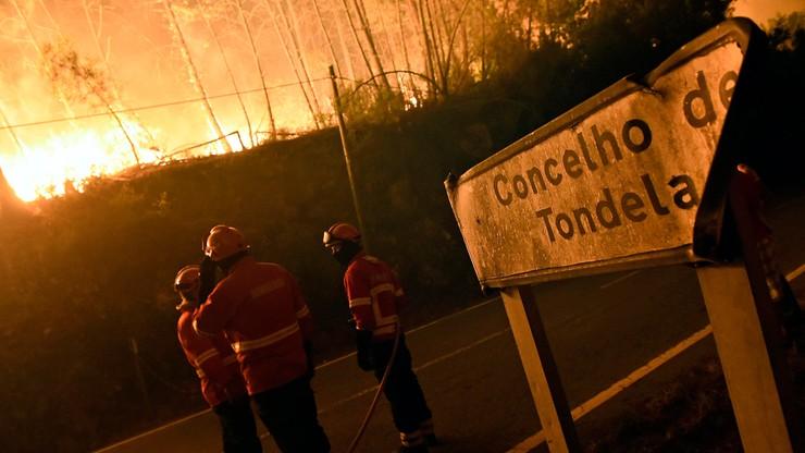 UE pomoże Portugalii w gaszeniu pożarów lasów
