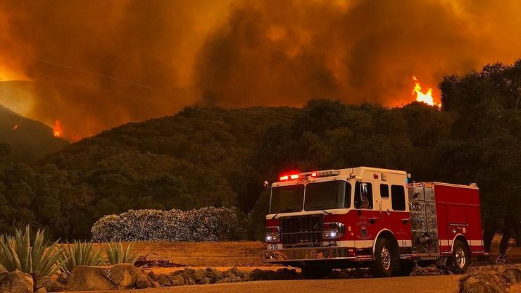 """Około 5 tys. strażaków walczy z pożarami w Kalifornii. """"Ściana ognia"""""""