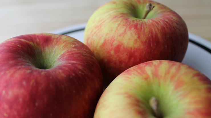 USA: postęp w otwarciu amerykańskiego rynku dla polskich jabłek