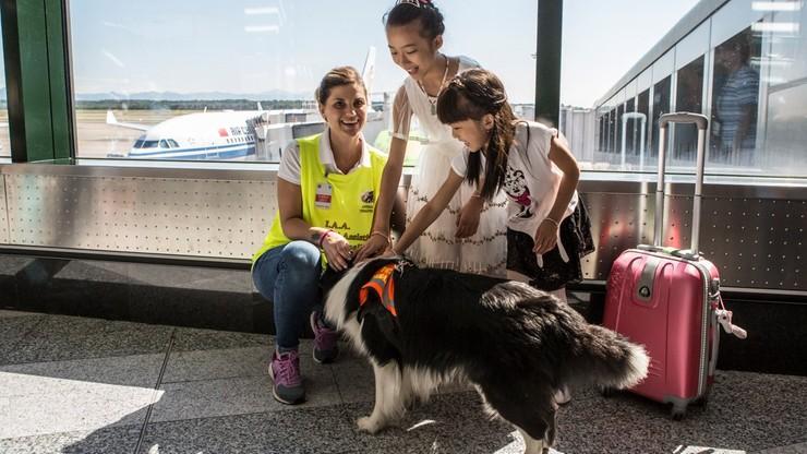 Włochy: psia terapia na mediolańskich lotniskach