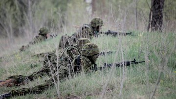 OBWE o sytuacji na Ukrainie: duża liczba ofiar, porozumienia mińskie łamane