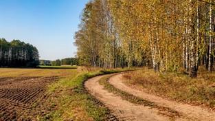 Jesień na Podlasiu i Mazurach